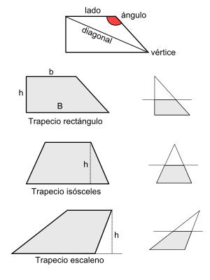 Trapecio (polígono). Artículo de la Enciclopedia.